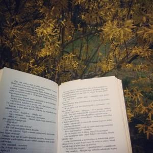 Tavasz Szadán könyvvel
